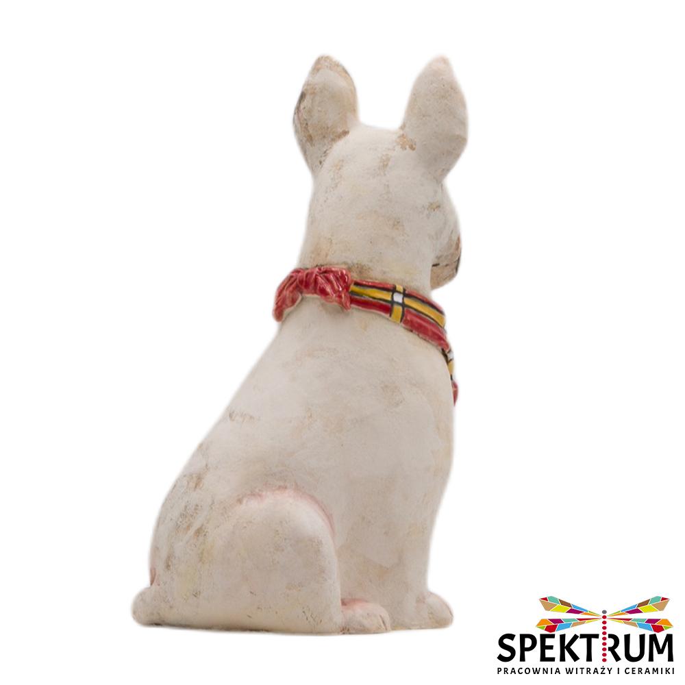 Pies Bulterier z bandamką w kratkę