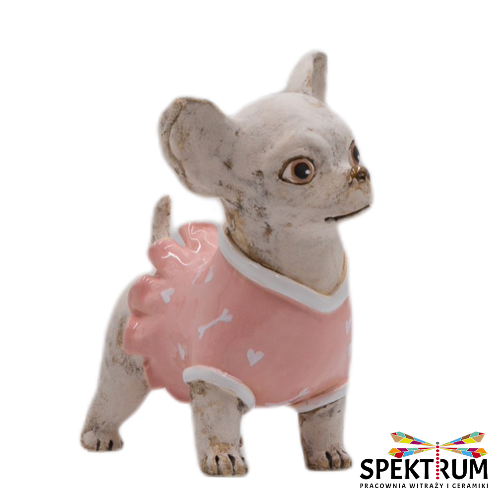 Pies Chihuahua w różowym ubranku